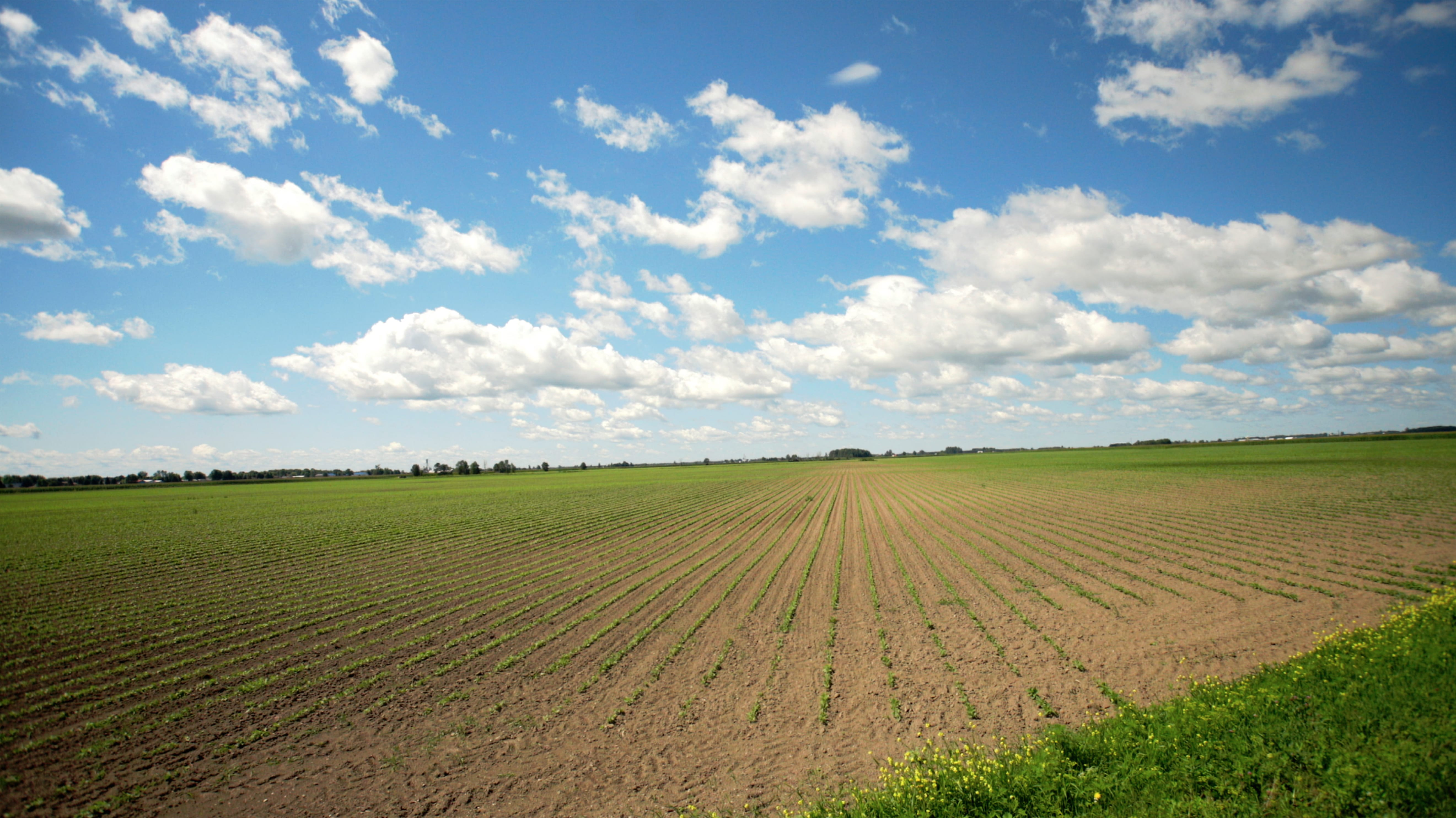Farming in Canada   A ...