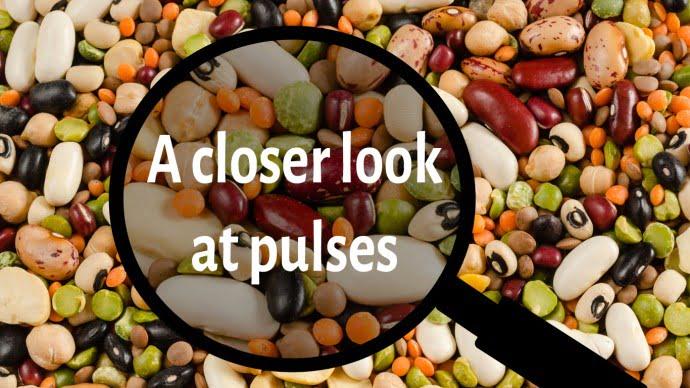 A closer look at pulses