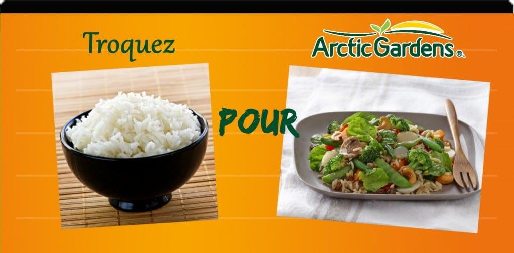 Riz vs salade de riz à l'asiatique