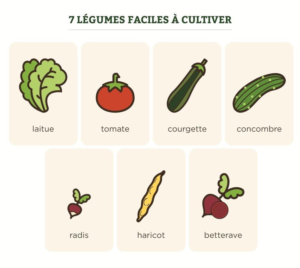 7 légumes faciles à cultiver