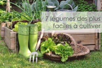 7 légumes des plus faciles à cultiver