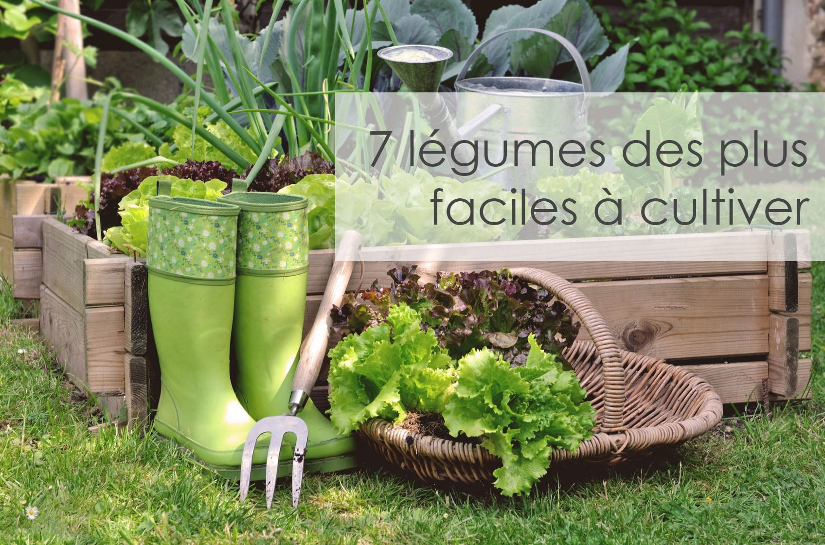 l gumes faciles cultiver arctic gardens. Black Bedroom Furniture Sets. Home Design Ideas