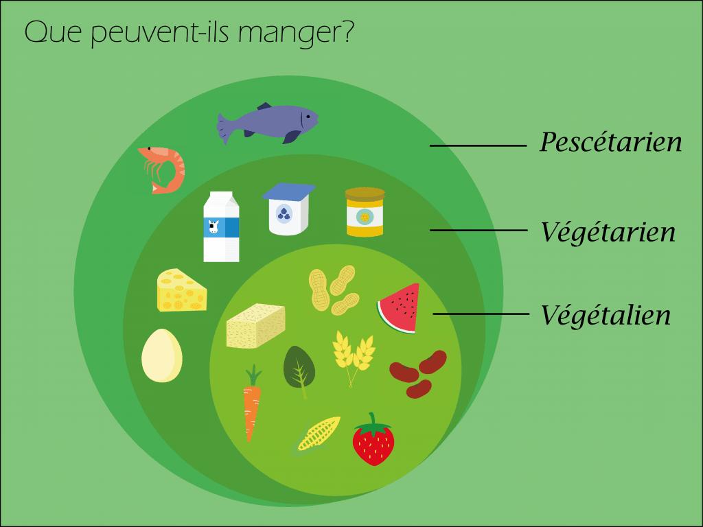 Alimentation des diètes végétariennes