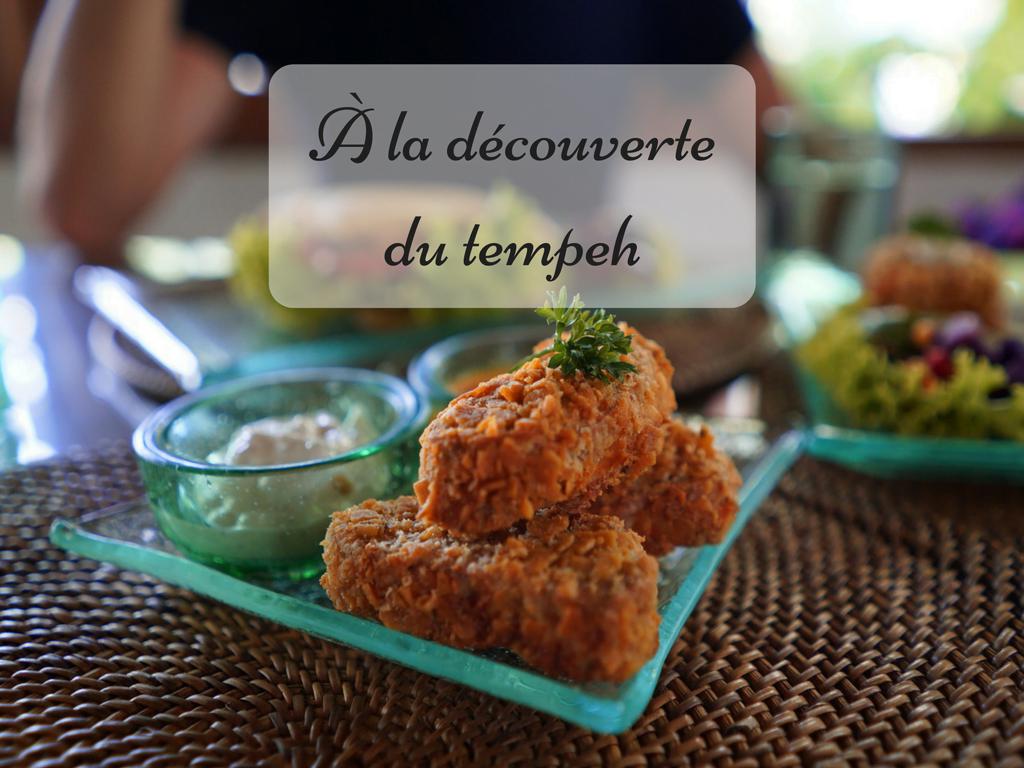 D couvrir et cuisiner le tempeh arctic gardens - Comment cuisiner les encornets surgeles ...