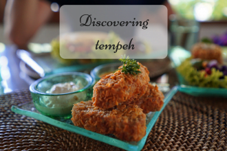 Discovering tempeh