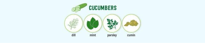 Cucumbers & spice