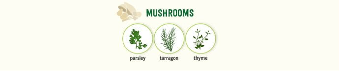 Mushrooms & spice