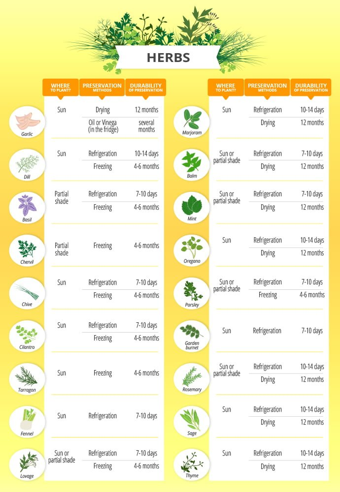 Gardening chart herbs