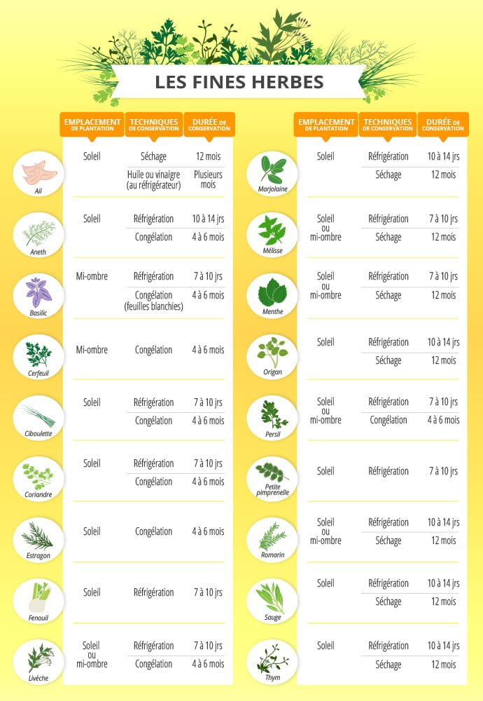 Les fines herbes les cultiver les conserver les savourer arctic gardens - Herbes aromatiques cuisine liste ...