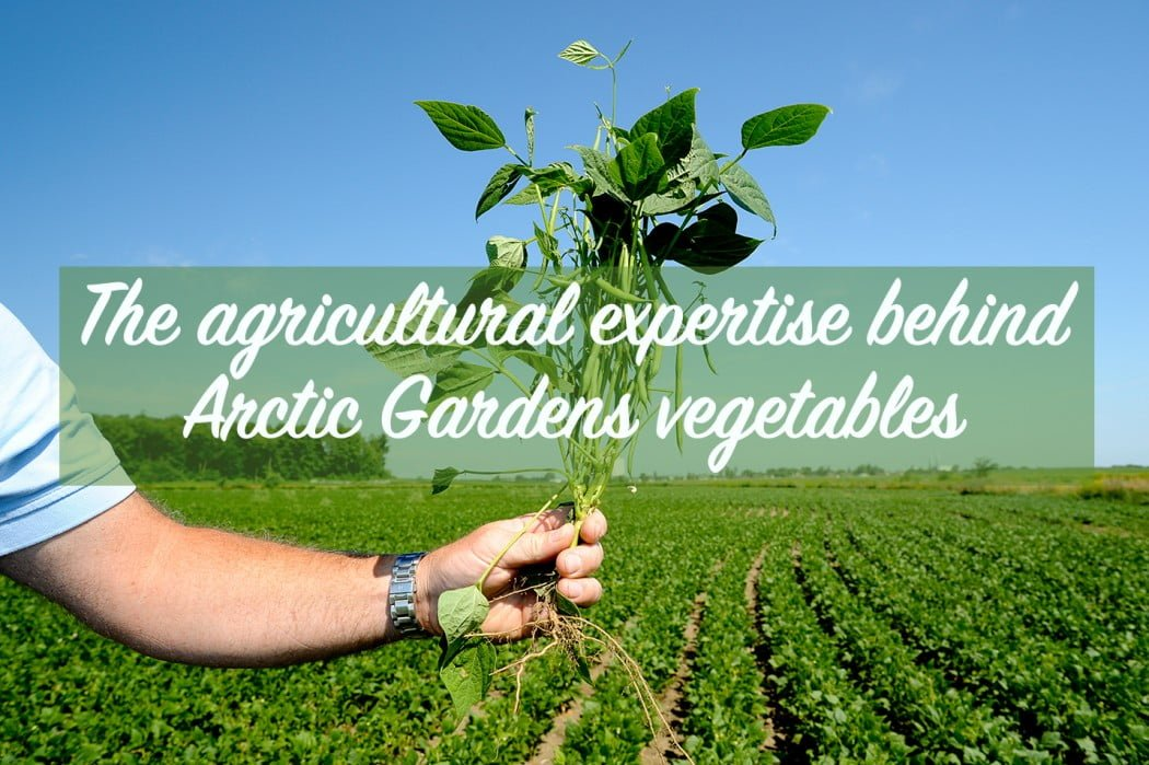 agricultural_expertise_cover
