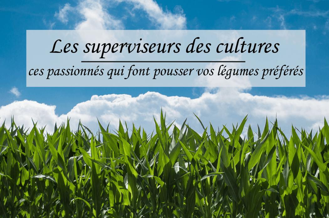 superviseurs des cultures
