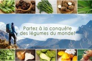 Conquête des légumes