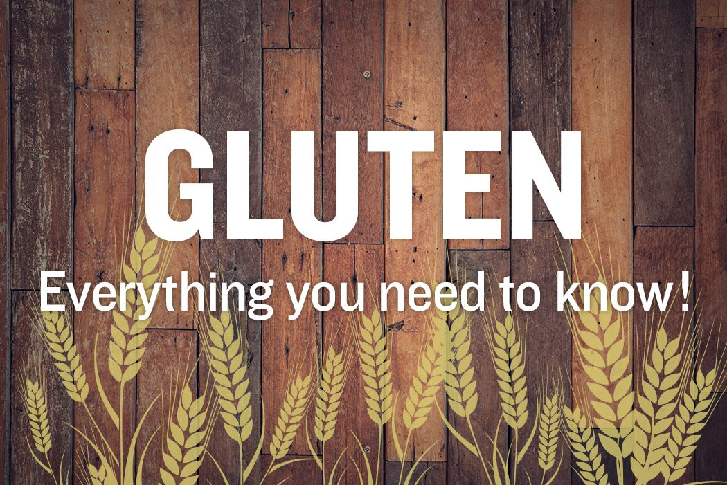 Gluten everything you need to know