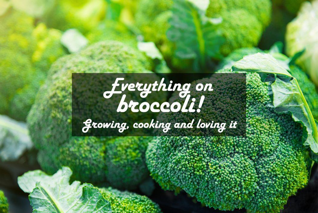 Broccoli Cover