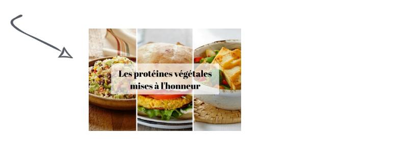 proteinez-vegetales