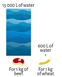 water-quantities