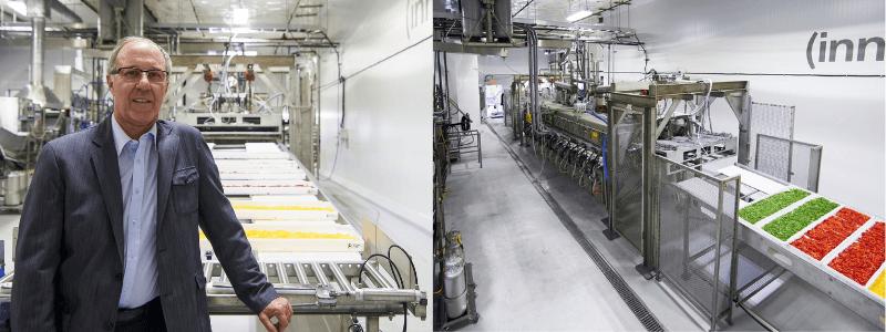 surgélation usine