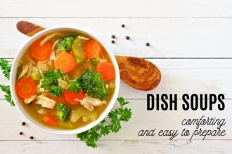 Dish soups