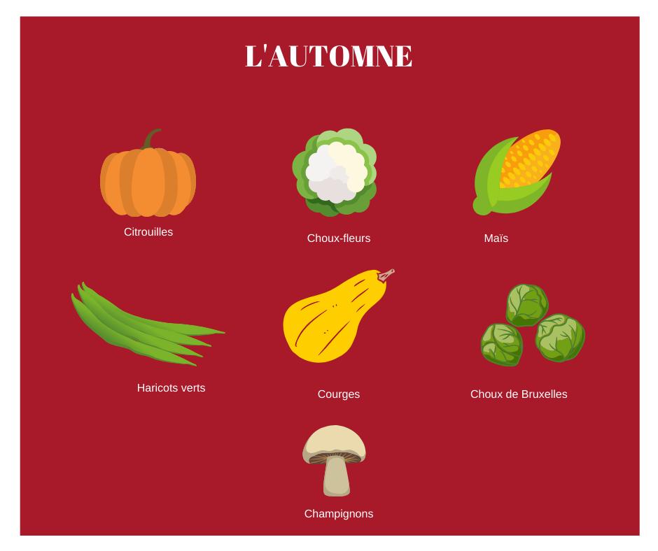 Calendrier légumes Quebec - Automne