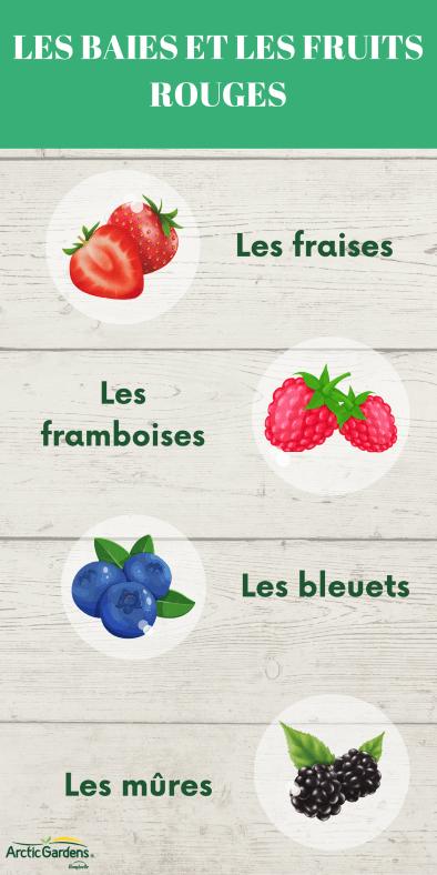 fruits-antioxydants