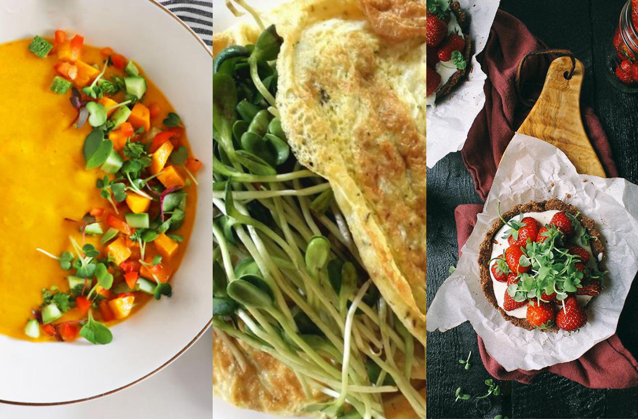 Microgreens-recipes