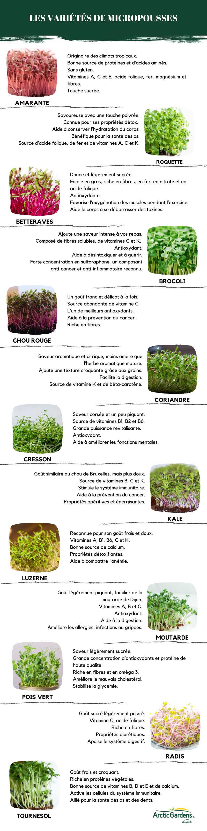 variétés-micropousses